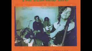 The Flaming Lips Lightning Strikes the Postman