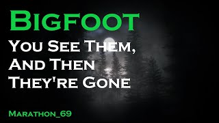 Bigfoot: Gone in a Split Second. Marathon_69