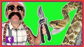 HobbyGrit Opens a REAL Snake Rattler in Desert Adventure with HobbyScience Lab by HobbyKidsTV