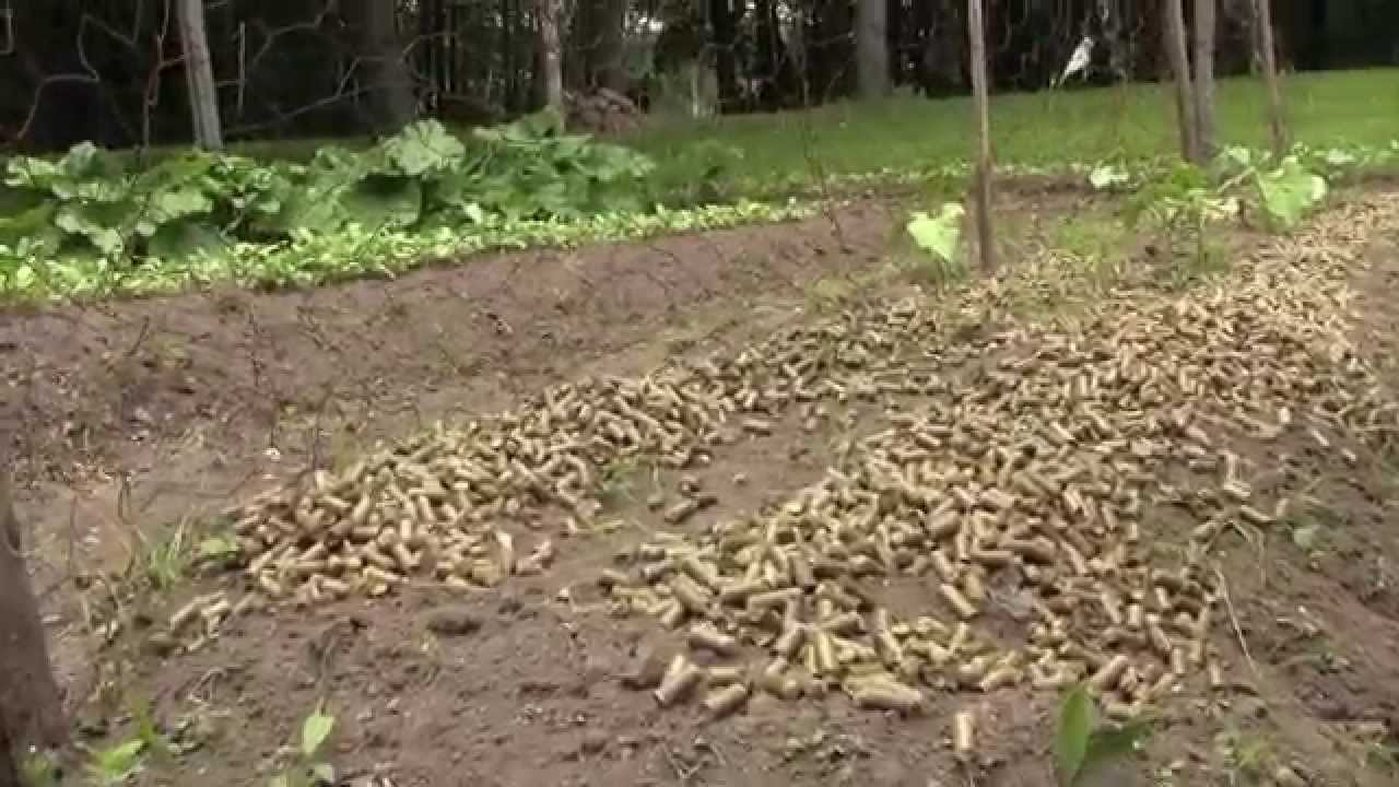 Home Garden Straw Pellets Used as Mulch - YouTube