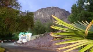 حديقة جبل أحد تزين جانبه المقابل للمسجد النبوي