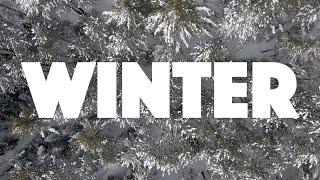 Relocate Minocqua_Winter