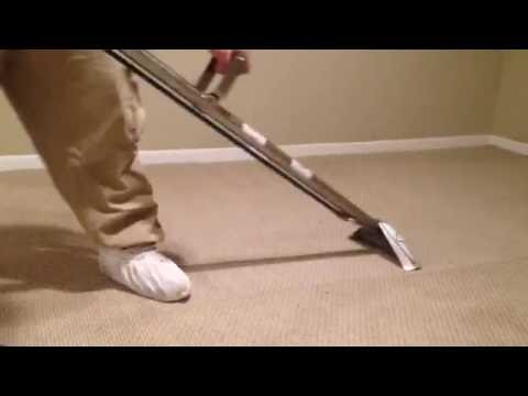 Absolute Shine Carpet Cleaning