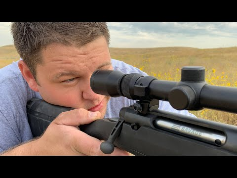 Savage Axis Rifle: Is This $349 Rifle Any Good?