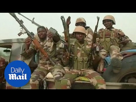 Chad And Niger Troops Retake Town From Boko Haram - Daily Mail
