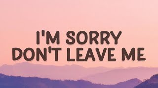 SLANDER - I'm sorry don't leave me (Love Is Gone) (Lyrics) ft. Dylan Matthew (Acoustic)