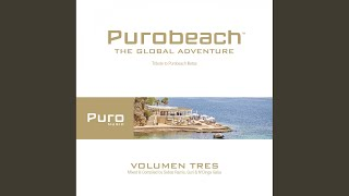 Puro Music Bonus by N'Dinga Gaba (Continuous Mix)