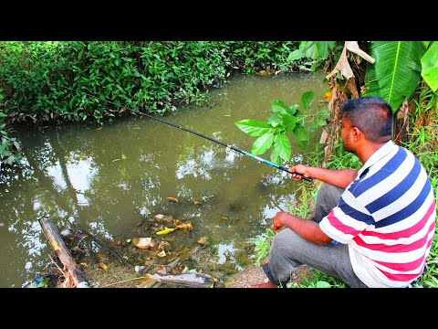 Best Fishing Video,Traditional Hook Fishing In Bangladesh Village,Part~47