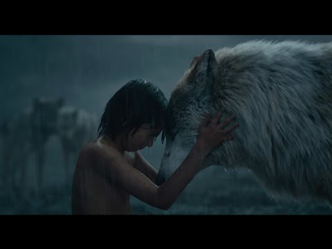 """Mowgli Leaves the Pack"" Clip - Disney's The Jungle Book"