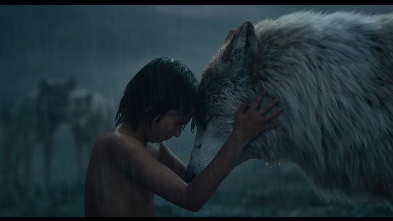 Mowgli Leaves The Pack Clip Disneys The Jungle Book Youtube