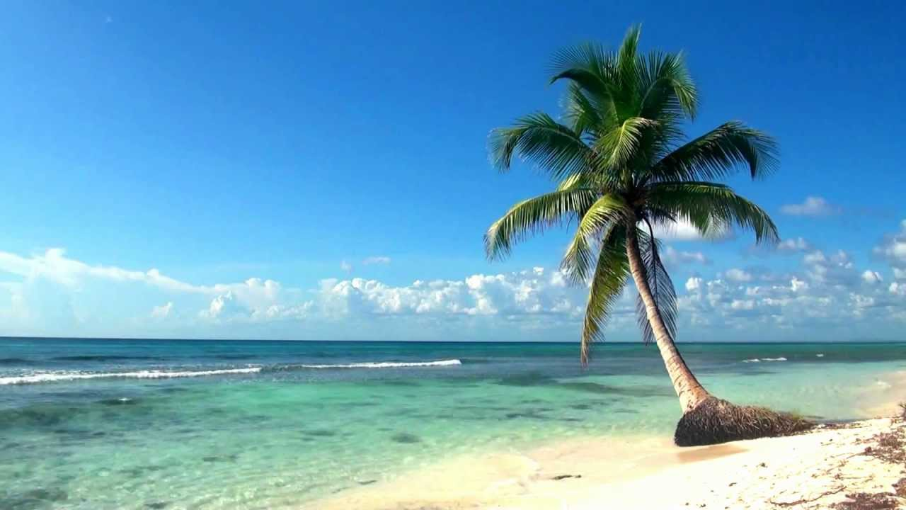 Relaxing Full Hd Film Ocean Live Wallpaper Dreamscene