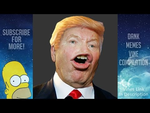 Dank Meme Compilation