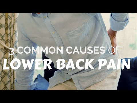 Lower Back Pain Causes | (360) 692-4264 Adams Chiropractic Silverdale WA [HD]