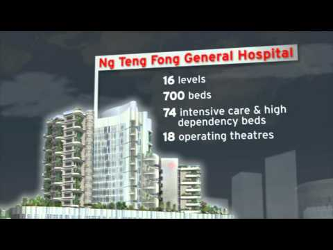 JurongHealth Integrated Hub Superstructure Launch, 19 Sep 2012