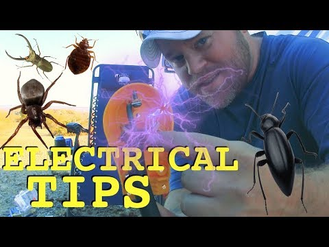 Electrical/Solar Hack, Pest Control & River Relaxing