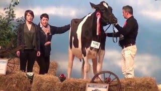 La Nuit de la Holstein 2016 : On backstage !