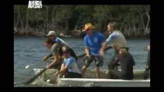5. серия. Спасение ламантина. Отдел по защите животных, Майами