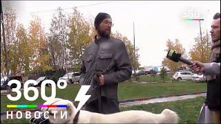 Очередной жуткий случай нападения собаки произошёл в Одинцове