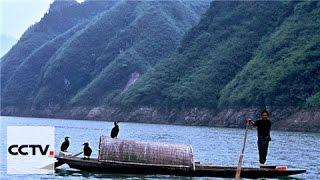Документальные фильмы: Общие воды одной реки Серия 5