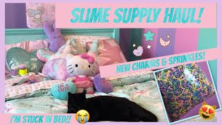 🎀NEW KAWAII SLIME SHOP!!🎀 + SLIME SUPPLY HAUL