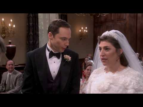 The Big Bang Theory   Luke Skywalker   Mark Hamill S11E24