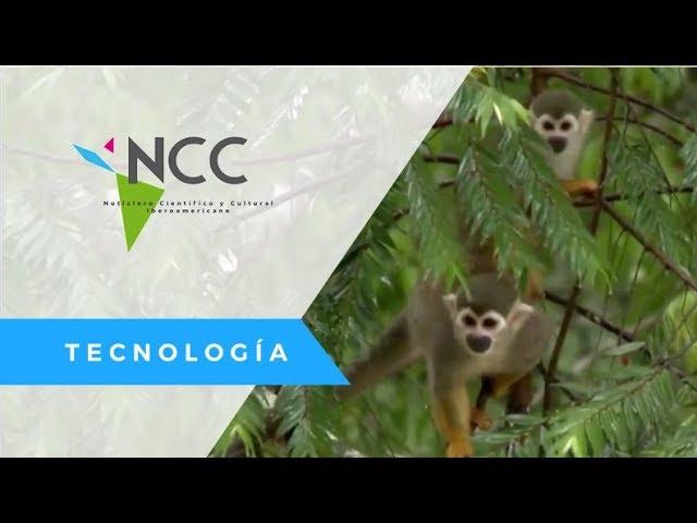 Realidad virtual aproxima la Amazonía a la gente