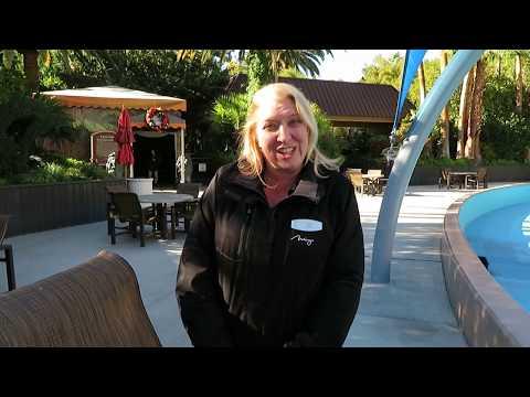 Secret Garden And Dolphin Habitat Walkthrough - Mirage Hotel Las Vegas 12/13/18