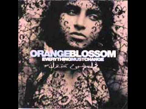 orange-blossom-maldito-vince-van-guff