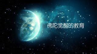 觉醒教育课程《回顾片》