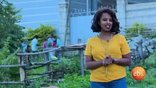 Special Buhe Show 2017 -  Semonun Addis | Tv show