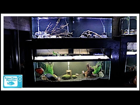 How To Build A 125 Gallon Fish Tank Double Stand