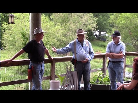 Organic Orchard Rejuvenation Part 1 Introduction