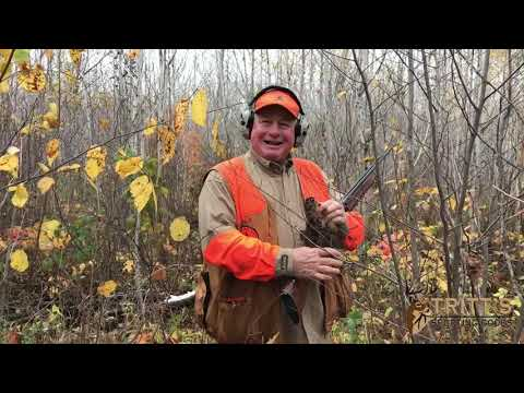 Grouse Camp 2019 Day 2! Grouse And Woodcock Hunting In Wisconsin