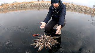 ОТЛИЧНЫЙ денёк по ОКУНЮ!!! Сезон 2020-2021 открыт!!! Зимняя рыбалка на ваучеры и блёсны.
