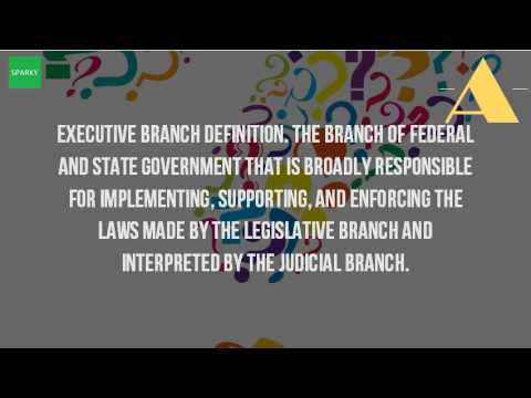 What Is A Executive Branch?