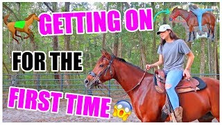 Getting On My Horse For The First Time! | Starting Brandy Pt.7