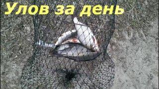 Рыбалка на Десне 2016 (Осещина)(Вечером позвонил знакомый, и со словами