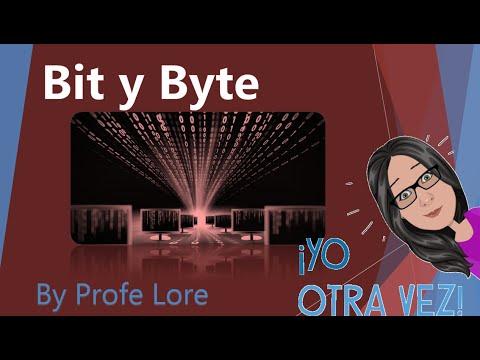 130   Bit y Byte