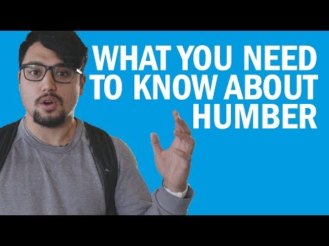 Things You Need To Know About Humber - Pathway & Transfer Options