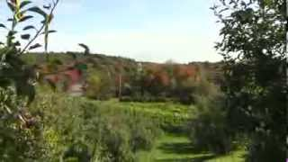 WMCT Magazine - Nashoba Valley Winery