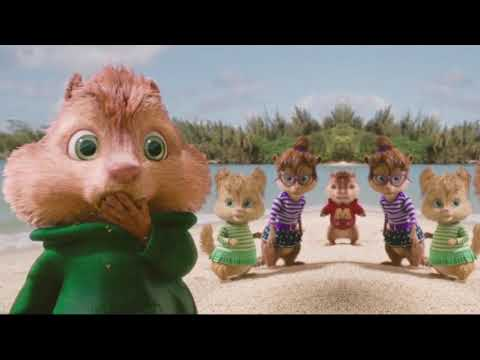 WE RULE THIS SCHOOL - THE CHIPETTES