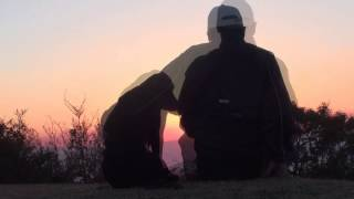 毎年夕日が綺麗に見える日に高原の山頂からムックとラムと私とで出掛け...