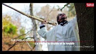 Bande-annonce - Le maire, le druide et le toubib - Documentaire
