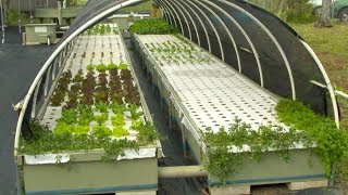 Sustainability a priority at Kauai Community College