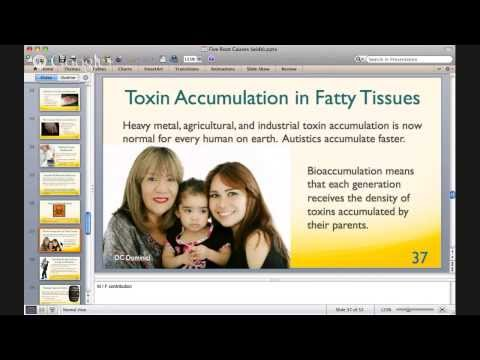 Five Root Causes of Autism 11/28/2013