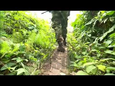 """""""Guacho"""", de pequeño comerciante a sanguinario disidente de las FARC"""