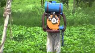 Petrol Engine Power sprayer Use for Insectsite spraying Video by Shirishkumar Patil Amravati