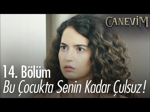 Müjgan, Yener'in zengin olmadığını öğreniyor - Canevim 14. Bölüm