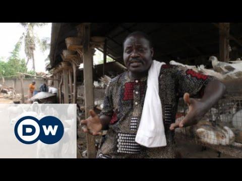 Benin's farmers break new ground | DW English
