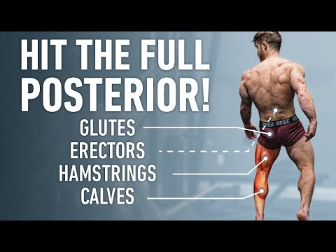 The Best Posterior Chain Focused Leg Day (Glutes, Hamstrings, Lower Back)